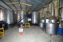 tequila is fermented in stainless steel tanks