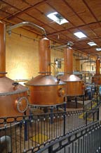 Copper alambiques (stills) in the distillation area at Mundo Cuervo