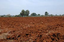 furtile red soil found in arandas, jalisco, mexico